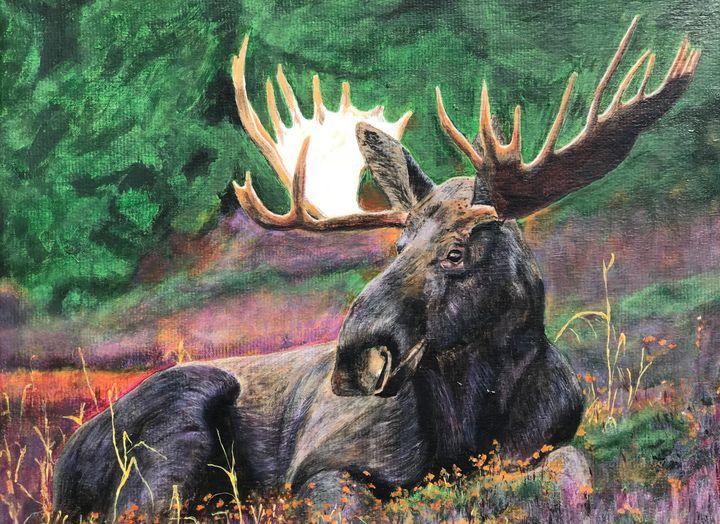 Relaxing Moose - PBM