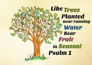 Bear Fruit in Season