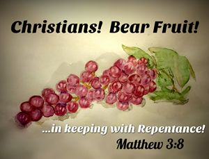 Christians! Bear Fruit!