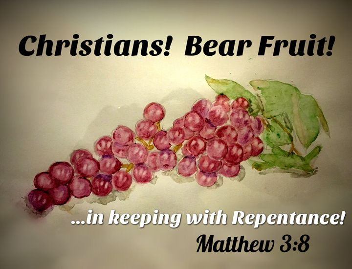 Christians! Bear Fruit! - The Humble Ant