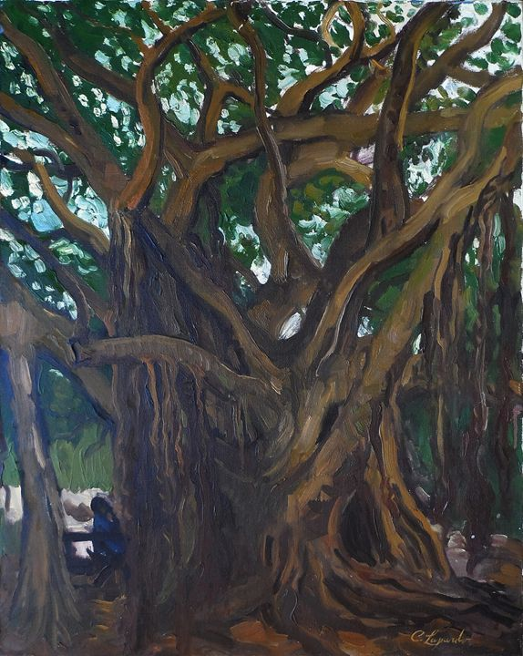 Banyan Tree - Charles Leopardo