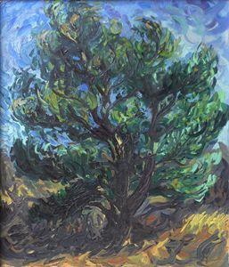 Fir Tree #2