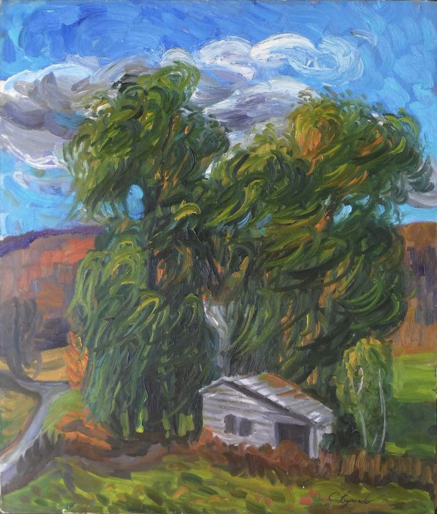 Willows and Shed - Charles Leopardo