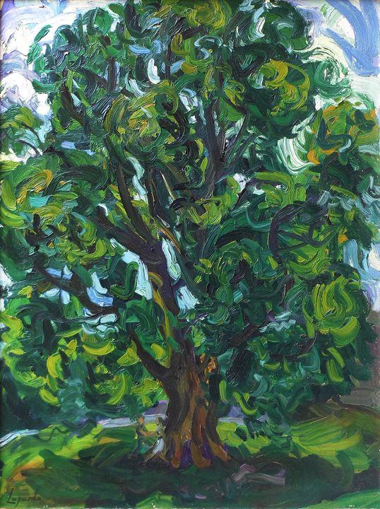 Old Tree At Vassar - Charles Leopardo