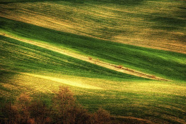 Tuscan Landscapes - Matteo Taffuri PhotArt