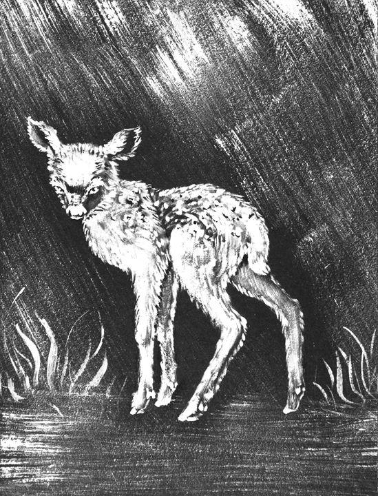 Baby_deer - Mariia Taylor