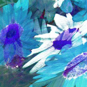 Daisies - Linda Marsden