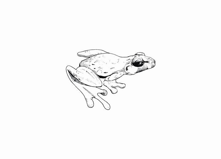 Frog - MoodswingsPrints