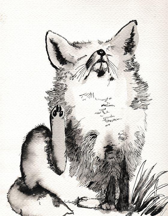 Greyscale Fox - The Delaney Odyssey