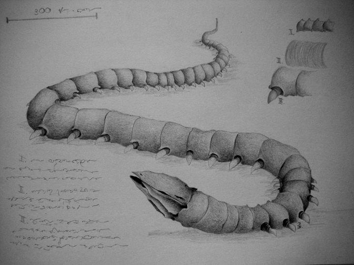 Snake creature - My drawings
