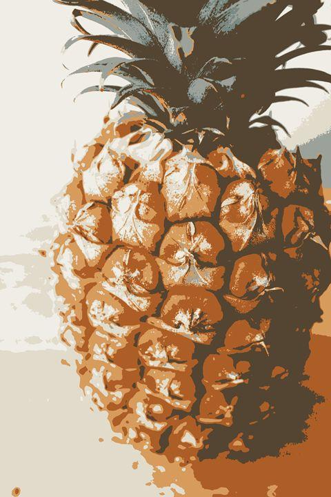 Pineapple - Rachel Vdolek