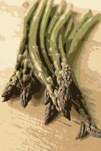 Asparagus Kitchen Art - Rachel Vdolek