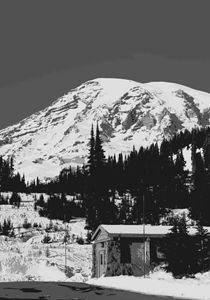 Black and White Mt. Rainier