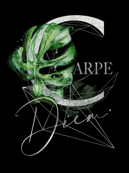 Carpe Diem - Inspiration in Silver - Beautiful Quotes