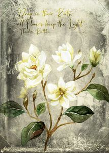 Magnolia Branch Quote – Vintage - Mohlala Design