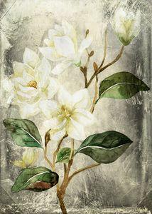 Magnolia Branch – Vintage - Mohlala Design