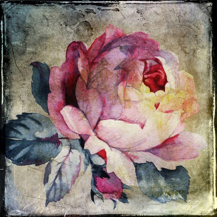 Antique Rose - Beautiful Quotes