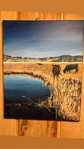 Sierra Valley - LuxuryArtPaintings