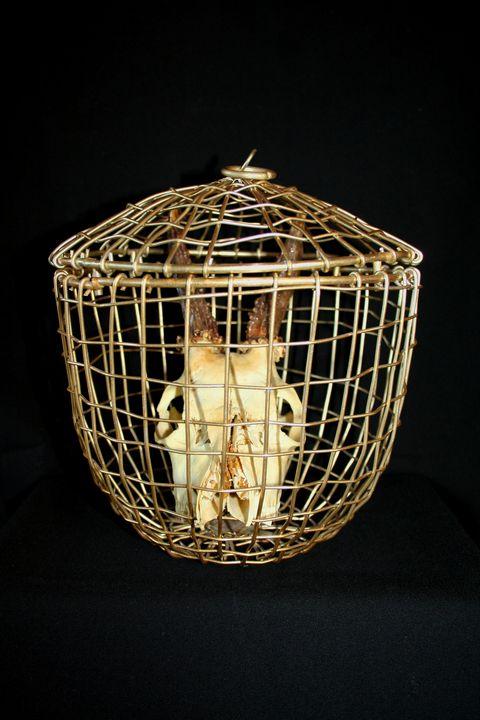 The Gilded cage - Patrik Šíma