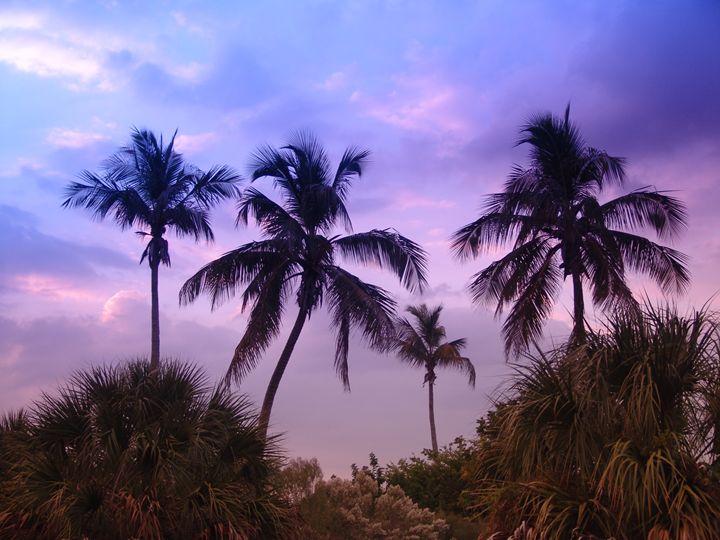 Tropical violet - Lens Art By Florene