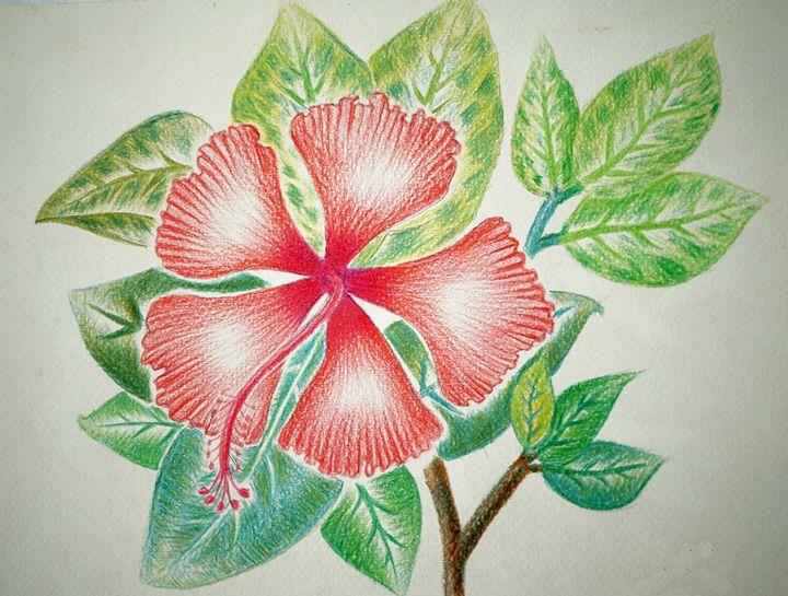 Red Flower - Pracha