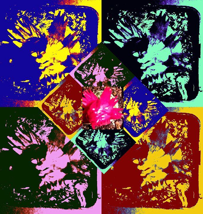 Colorful Cacti - Melissa