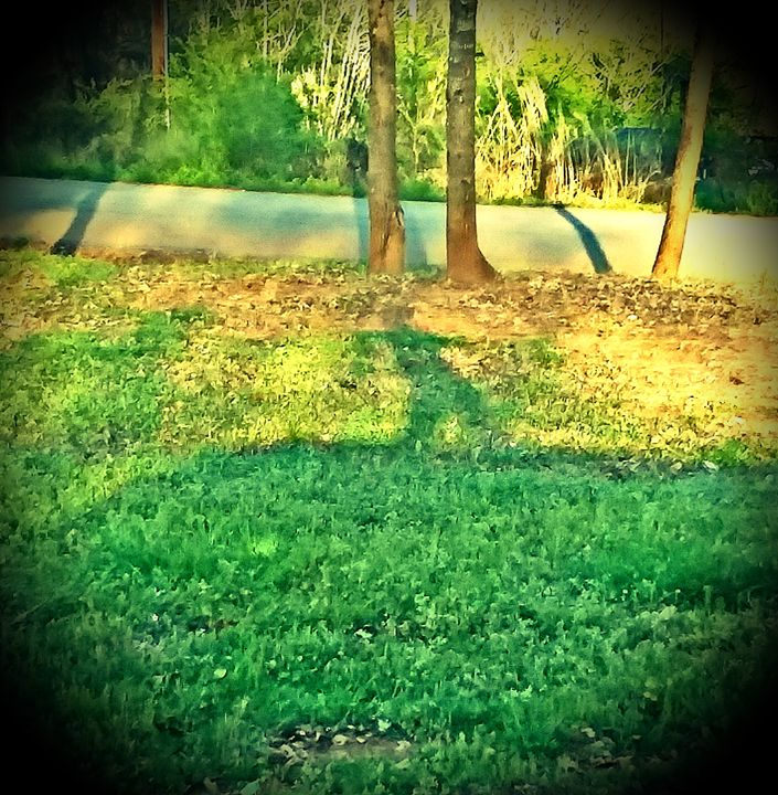 Dancing shadow - Melissa