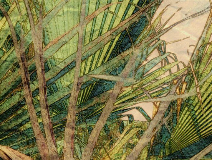 Palm Leaf - Strangio