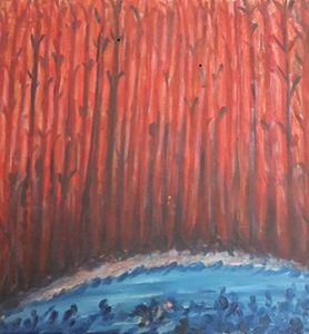 Woods in Dark