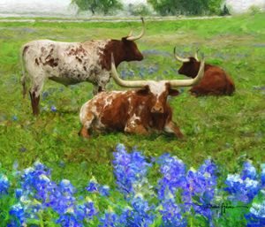Three Longhorns