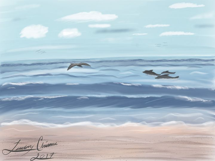 Dolphin sighting - Lindsey Chrisman
