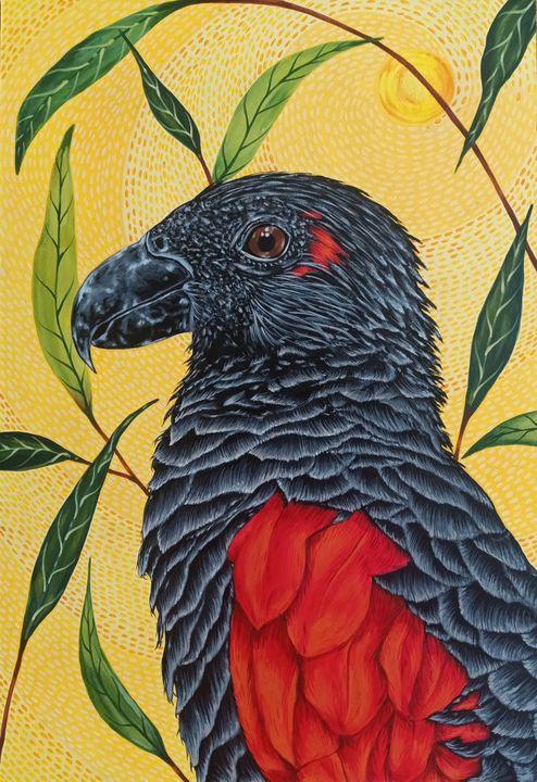 """Dracula Parrot"" - Art by Rishika"