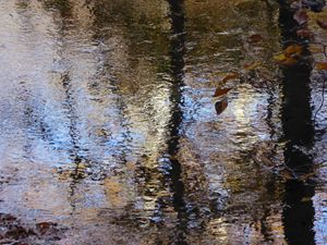 Autumn, reflected in the river