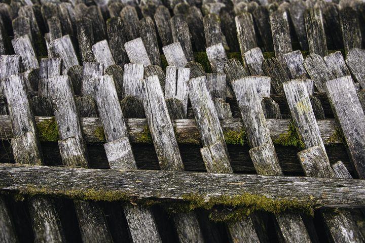 Mossy Fence II - Pecek Gallery