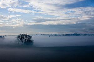 Rural Blue Fog Symphony