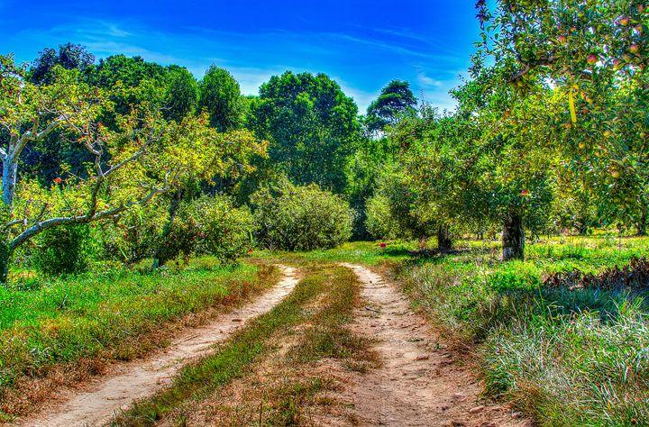 Farming Road - Bryant Heffernan