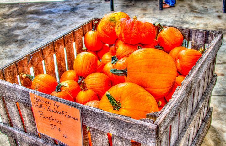 Pumpkin Basket - Bryant Heffernan