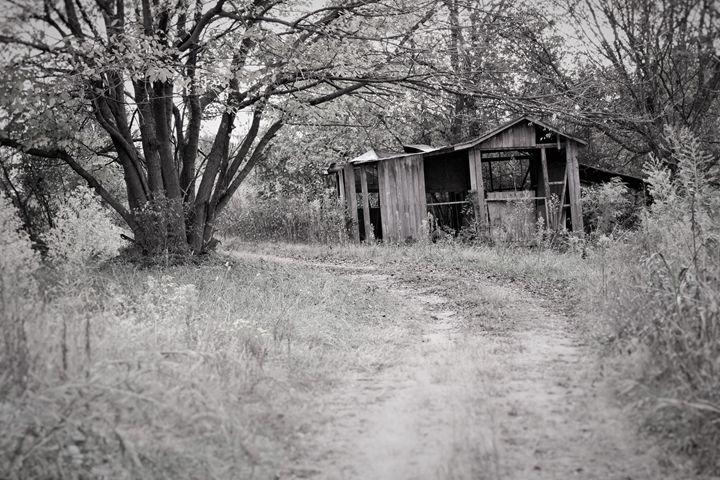 Forgotten - Lisa McClendon