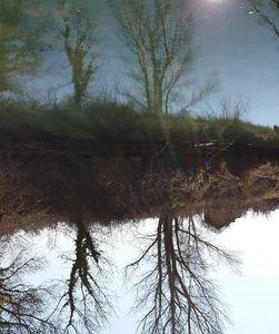 Reflect03