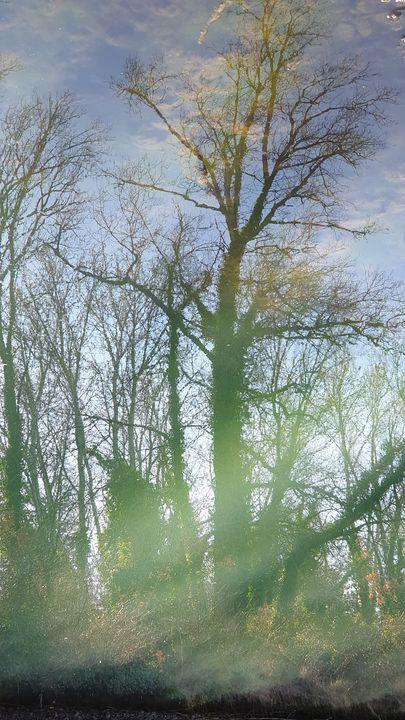 Reflect05 - mariesimon