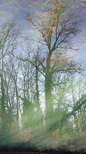 Reflect05