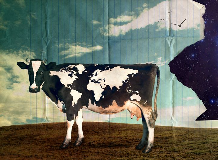 Surreal Bovine Atlas - Kitty Bitty
