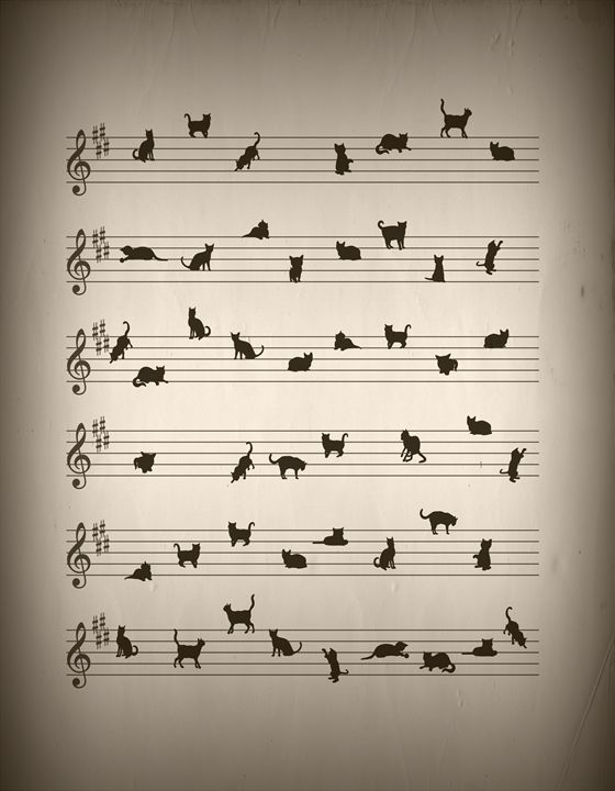 Conceptual Art Cat Song - Kitty Bitty