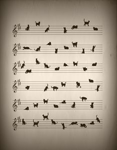 Conceptual Art Cat Song