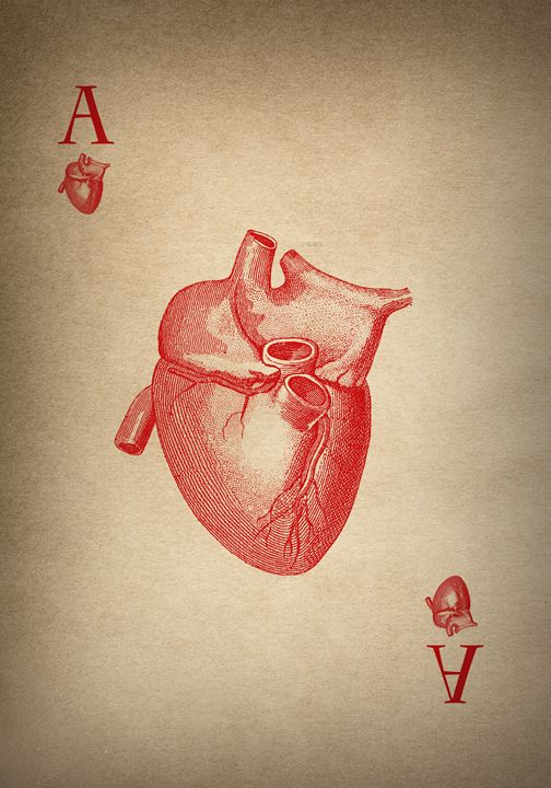 Vintage Medical Heart Ace - Kitty Bitty