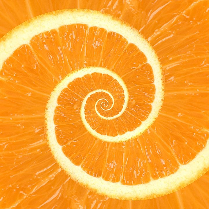 Spiral Citrus Orange Droste - Kitty Bitty
