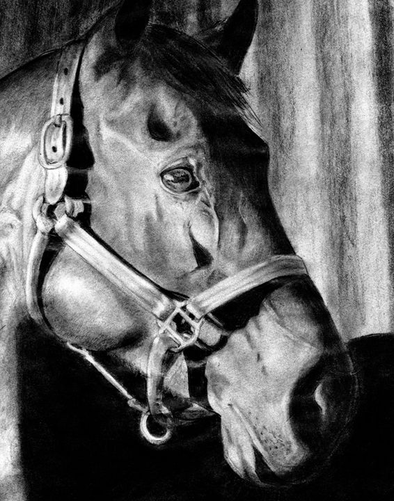 Capturing hearts - Dreaming of Animals Art by Amber McKinley