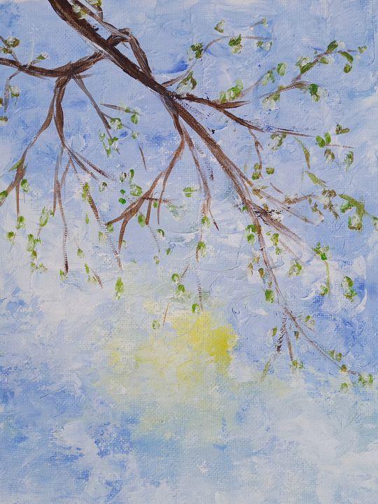 Blossom2 - Cristina's Gallery