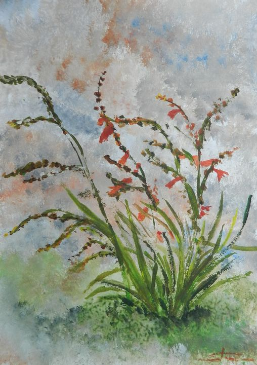 Flowers in a Garden - Cristina's Gallery