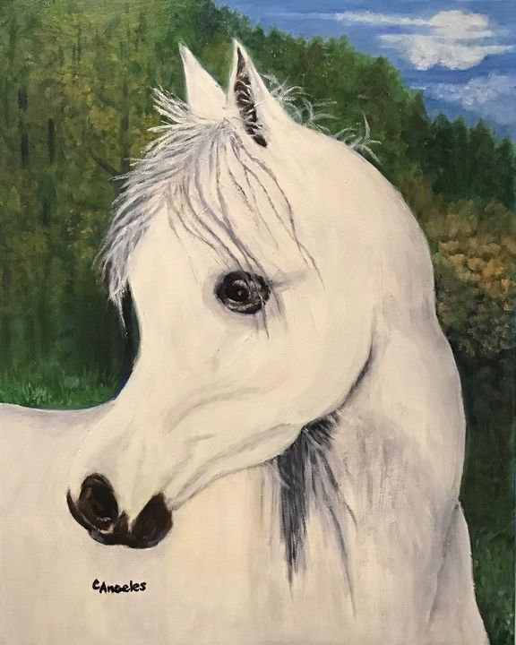 The Mare - Oils and More